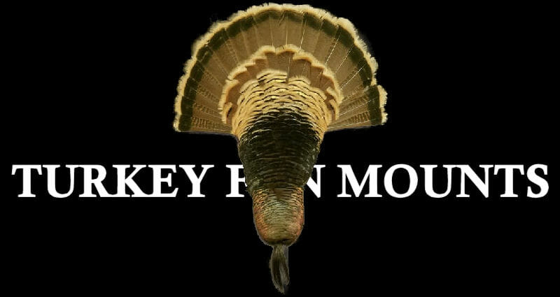 Turkey Fan Mounts